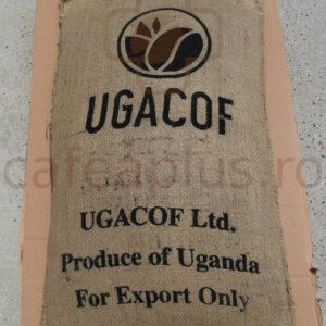cafea verde uganda 2.jpg
